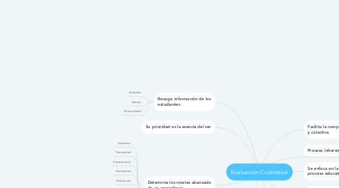 Mind Map: Evaluación Cualitativa