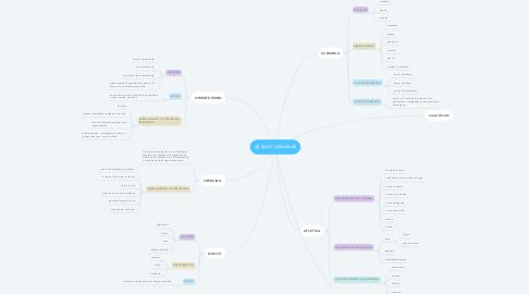 Mind Map: gli sport individuali