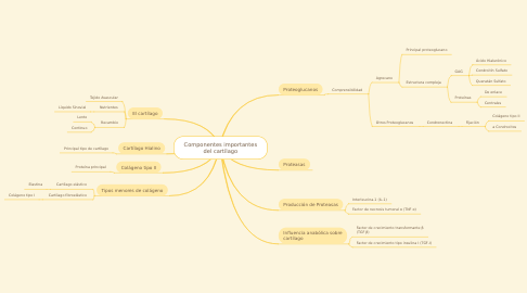 Mind Map: Componentes importantes del cartílago