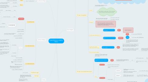 Mind Map: PRINCÍPIOS DO DIREITO  PENAL