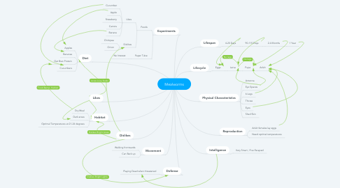 Mind Map: Mealworms