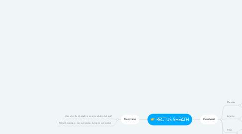 Mind Map: RECTUS SHEATH