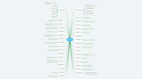 Mind Map: Animalia