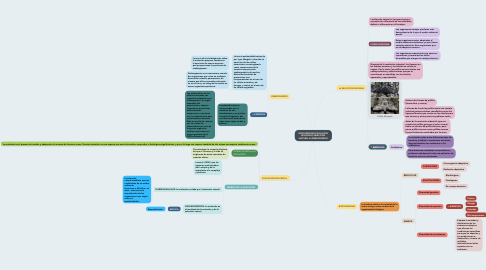 Mind Map: BIODIVERSIDAD,EVOLUCION BIOLOGICA,SELECCION NATURAL & SIMBIOGENESIS
