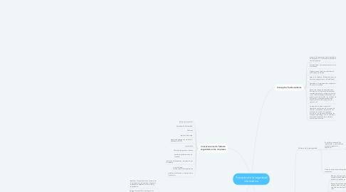 Mind Map: Principios de la seguridad informática