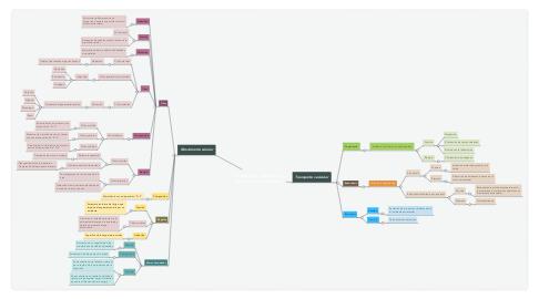 Mind Map: Transporte vesicular y movimiento celular