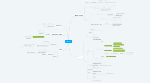 Mind Map: NNIT A/S