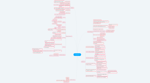 Mind Map: How might we best support ELLs?