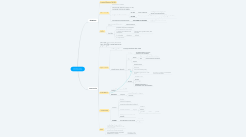 Mind Map: ONTOLOGÍA