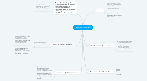 Mind Map: Sentido del Olfato