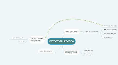 Mind Map: ESTEATOSI HEPÀTICA