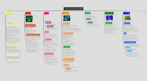 Mind Map: The Six Kingdoms of Biology