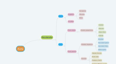 Mind Map: Aorta