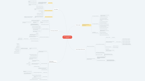 Mind Map: Manual de Salud del paciente