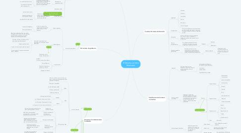 Mind Map: El Sistema Jurídico Mexicano