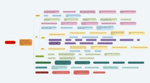 Mind Map: Digital Imaging