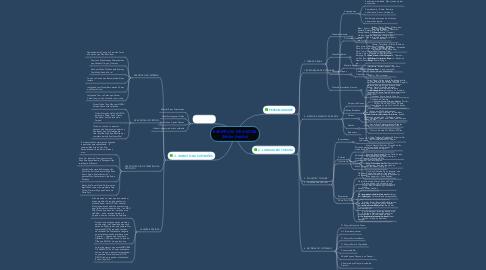 Mind Map: EXEMPLOS DE AVATAR (Nicho Adulto)