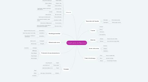 Mind Map: Clasificación de Neuronas