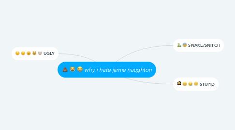Mind Map: why i hate jamie naughton