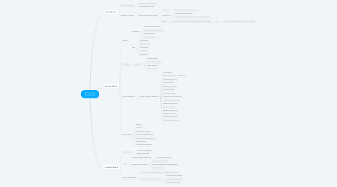 Mind Map: Unites States Government