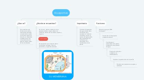 Mind Map: Acuaporinas