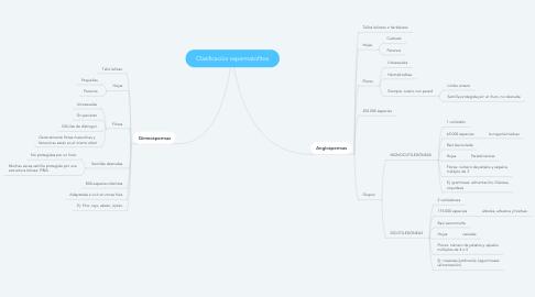 Mind Map: Clasificación espermatofitos