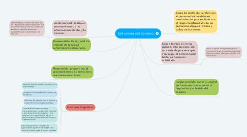 Mind Map: Estructura del cerebro.