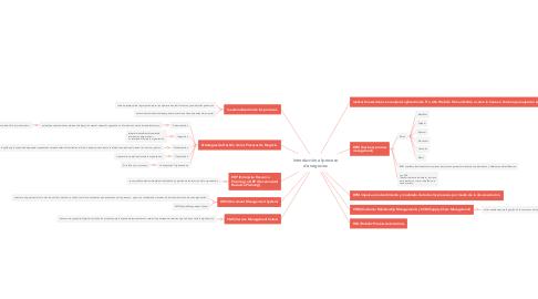 Mind Map: Introducción al proceso de negocios