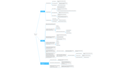 Mind Map: Gerencia Social