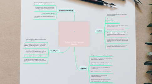 Mind Map: Recovery from Vigorous Exercise