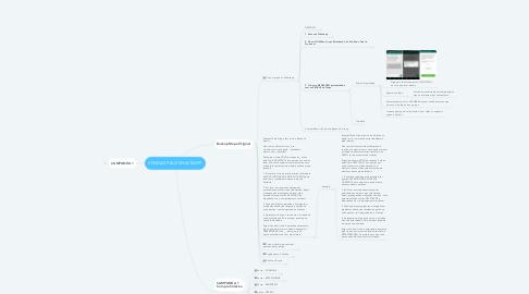 Mind Map: VENDAS PELO WHATSAPP