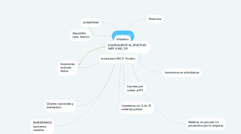 Mind Map: ACTIVOS