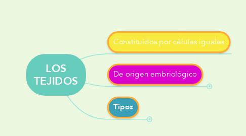 Mind Map: LOS TEJIDOS