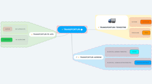 Mind Map: TRANSPORTURI