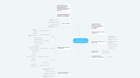 Mind Map: Importancia de  investigación de mercado