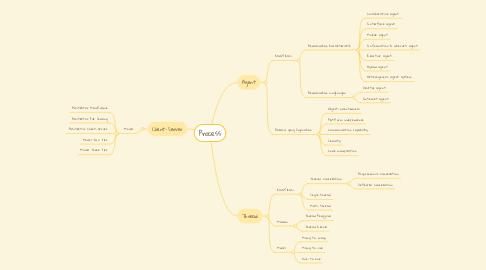Mind Map: Process