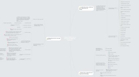 Mind Map: CONDICIONES  DE LA ORGANIZACIÓN DEL TRABAJO