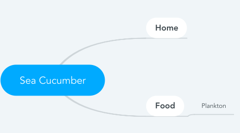 Mind Map: Sea Cucumber