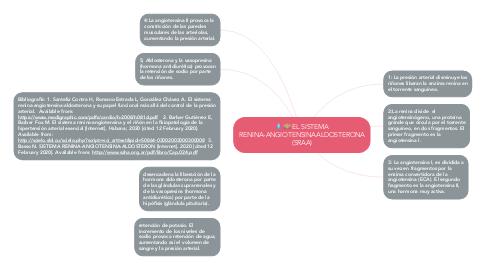 Mind Map: EL SISTEMA RENINA-ANGIOTENSINAALDOSTERONA (SRAA)