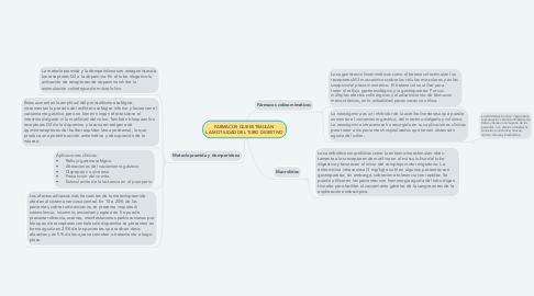 Mind Map: CONTEXTO CULTURAL