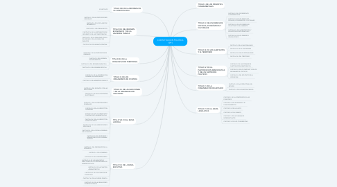 Mind Map: CONSTITUCION POLITICA 1991