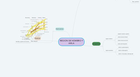 Mind Map: REGION DE HOMBRO Y AXILA