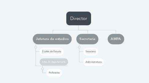Mind Map: Director