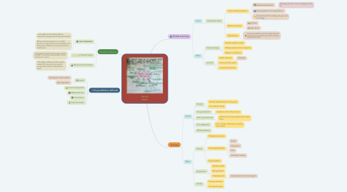 Mind Map: Social issue