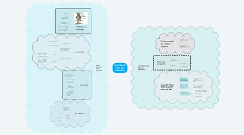 Mind Map: DIVERSIDAD DE LOS ANIMALES