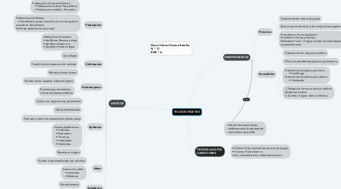 Mind Map: TECIDOS VEGETAIS