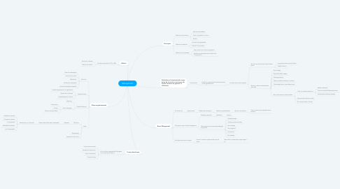 Mind Map: Management