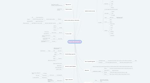 Mind Map: Regne des animals (1)
