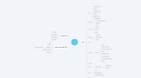 Mind Map: aula virtual