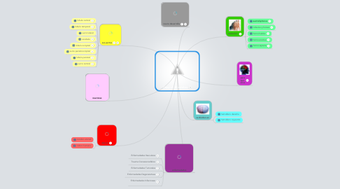 Mind Map: Copy of  El cerebro
